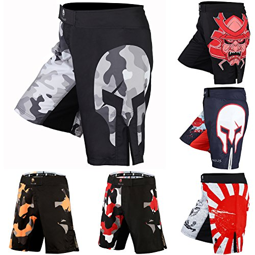 Verus Men's Mixed Martial Art Shorts (Black/Grey, Large)