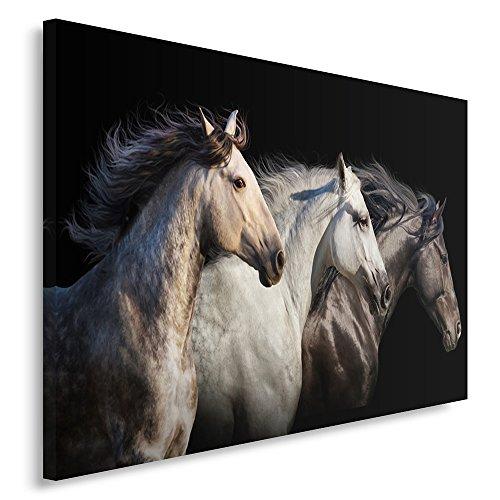 Feeby Frames, Cuadro en lienzo, Cuadro impresión, Cuadro decoración, Canvas de una pieza, 80x120 cm, CABALLOS, ANIMALES, NATURALEZA, NEGRO, BLANCO
