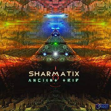 Ancient Trip