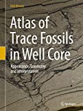 Atlas of Trace Fossils in Well Core: Appearance, Taxonomy and Interpretation - Dirk Knaust