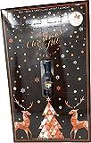 Baileys 24 Days of Christmas Advent Calendar 2021 with Seasonal Greeting Card - Countdown to Christmas