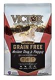 VICTOR Dog Food Purpose - Grain Free Active Dog &...