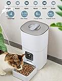 Zoom IMG-2 aokey distributore cibo gatti automatico