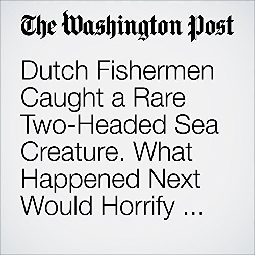Dutch Fishermen Caught a Rare Two-Headed Sea Creature. What Happened Next Would Horrify Scientists. audiobook cover art