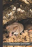 tasmania possum: small lined Opossum Notebook / Travel Journal to write in (6'' x 9'') 120 pages