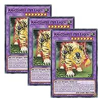 【 3枚セット 】遊戯王 英語版 MP18-EN166 Amazoness Pet Liger アマゾネスペット虎獅子 (ノーマル) 1st Edition