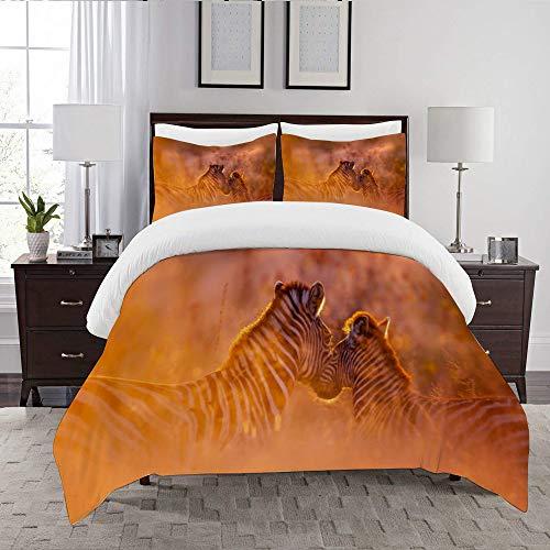 LENYOVO Duvet Cover Set-Bedding,Plains Zebra In Kruger National Park South Africa,Quilt Cover Bedlinen-Microfibre 200x200cm with 2 Pillowcase 50x80cm