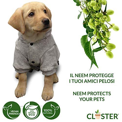 CLOSTER Neem Pet Protection Listo para Usar 500 Ml - Spray Antiparasitario Perros Antipulgas Gatos - Insecticida Pulgas contra Pulgas Y Garrapatas Ácaros Piojos Insectos para Perros Gatos Y Caballos