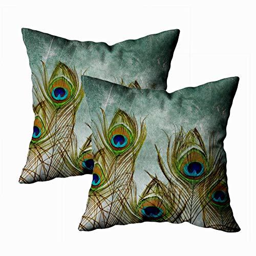 TOMKEY Decor Pillow Covers, 2 Packs Hidden Zippered 18X18Inch Peacock Decor Throw Cotton Pillow Case...