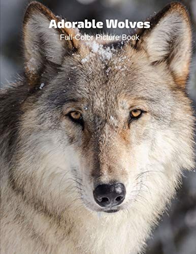 Adorable Wolves Full-Color Picture Book: Wolves Picture Book for Children, Seniors and Alzheimer's Patients -Wildlife Animal Wolf Nature