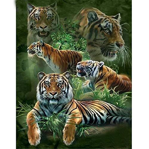 Yingxin34 Puzzle 5000 Piezas,Cinco Tigres Puzzle,Rompecabezas Redondo,Puzzle Creativo,Puzzle Adultos -61.61x41.53 Pulgadas (156.5 x 105.5cm)