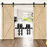 HomLux 10ft Heavy Duty Sturdy Sliding Barn Door Hardware Kit Double Door - Smoothly and Quietly - Simple and Easy to Install - Fit 1 3/8-1 3/4 inch Thickness Door Panel(Black)(J Shape Hangers)
