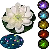 Floating Pool Lights,Battery Operated Floating Flowers, Pond Decor,Floating Pool Flower Lights Color-Changing -for Wedding Outdoor Party Decorative 6 Pack (Dragonfly)