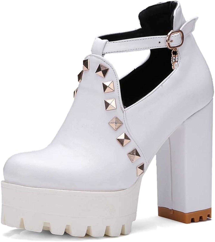 GIY Women's Chunky Platform High Heel Pump T-Strap Mary Jane Round Toe Rivets Uniform Dress Oxford shoes