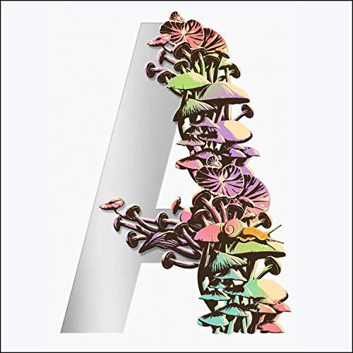 Ambergris Audiobook By Jeff VanderMeer cover art