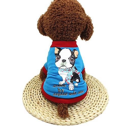 Haustier T-Shirt,Netter Schoßhund T Shirt Kostüm,Frühlings-/Herbstmode-Haustier-Kleidung-Liked by Anyone who See,für Das Wandern,Das Joggen,für Kleinen Hund (Blau, XS)