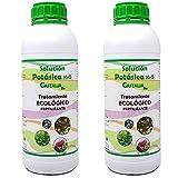 Castalia - Jabón Potásico Ecológico - Pack 2 de litros Total -...