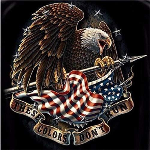 MOL adelaar Amerikaanse vlag DIY 5D diamant schilderij woonkamer slaapkamer decoratief schilderij 40x50cm/16x20in één kleur
