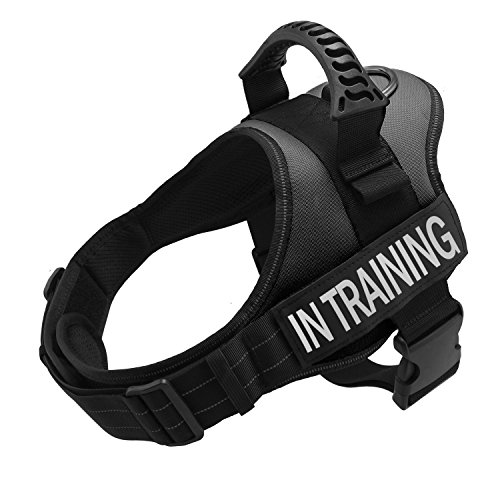 TOPPLE in Training Nylon Dog Vest Harness-Reflective Vest with Comfortable Handle for Large Medium Small Dogs,Purchase Come with 2 Reflective in Training Patches.(Chest 19-23'' Black)