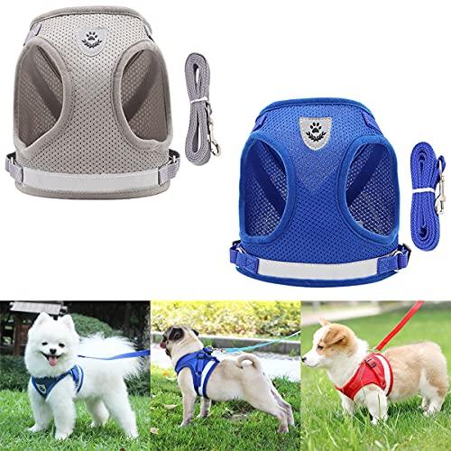 Barrageon 2 Piezas Arnés Cachorros y Correa Perros Chaleco de Gatos Pecho Mascotas Ajustable Respirante Reflectante Externo Correas Entrenamiento Ejercer Adecuado (Gris + Azul)