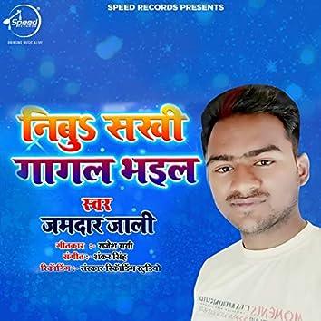 Nibu Sakhi Gaagal Bhaeel - Single