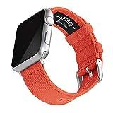 Archer Watch Straps | Correas Reloj Lona para Apple Watch | para Hombre y Mujer (Naranja Mandarina, Plata, 38/40mm)