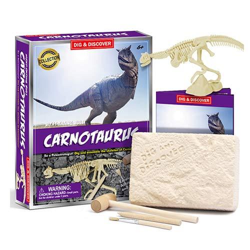 DSYYF Kit de excavación de fósiles de Dinosaurios 3D, Juguetes de excavación arqueológica Rompecabezas de Esqueleto de Dinosaurio Modelo para Juguetes de niños Fiesta de cumpleaños,D