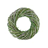 Northlight Moss Twig Artificial Wreath, Green and White 14-Inch
