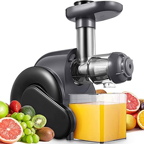 Estrattori di succo a Freddo, Estrattore di frutta e verdura con Motore Silenzioso e Funzione Inversa, Facile da pulire con un pennello, Grigio