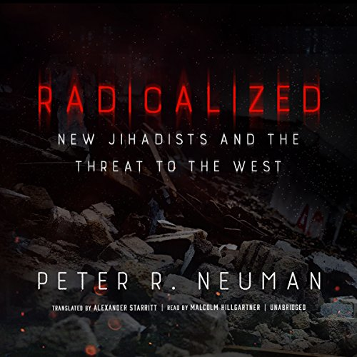 Radicalized audiobook cover art