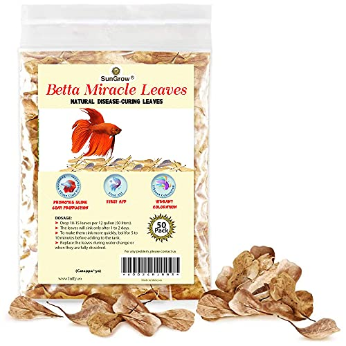 SunGrow Indian Almond Leaves, 2-Inches, Water Conditioner for Betta & Gouramis, 50 Leaves per Pack