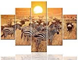 Contemporary Wall Art Zebra in Natural Meadow Pictures on Canvas Black and White Stripes Paintings Sundow Yellow Artwork Living Room Home Decor Framed Ready to Hang Posters and Prints(60''Wx32''H)