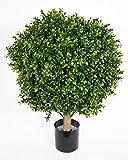 Seidenblumen Roß Kugel-Buchsbaum 65x50cm IG Buchsbaumkugel auf Stamm Buchskugel künstlicher Baum Buchs Kunstpflanzen Kunstbaum Dekobaum