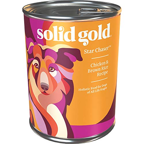 Solid Gold - Star Chaser with Real Chicken - Natural Wet Dog Food - 13.2-oz Can (6Count)
