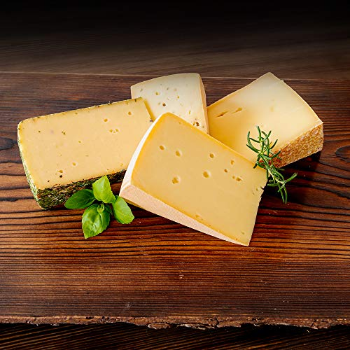 WURSTBARON® Hartkäse Paket - Set aus verschiedenen Käsesorten am Stück - Käse Probierpaket