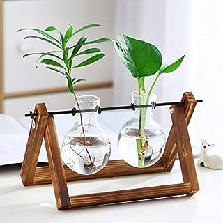 hydroponic vase Plant Terrarium with Wooden Stand Propagation Stations,Air Planter Bulb Glass Vase Desk Planter Metal Swiv...