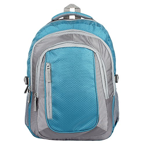 AmazingHind 15.6-Inch Laptop Backpack (B