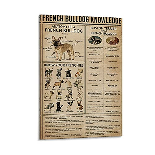 QWERER Posters Knowledge French Bulldog Pattern Customed Painting Canvas Wall Art Bedroom Decor Artwork Gift Poster