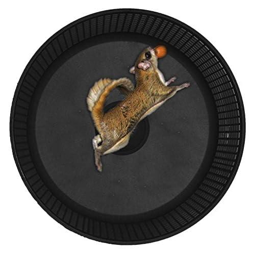 Sugar Glider Wheel,12 Inch Stealth Freedom Wheel; Black with Cage Side Mount