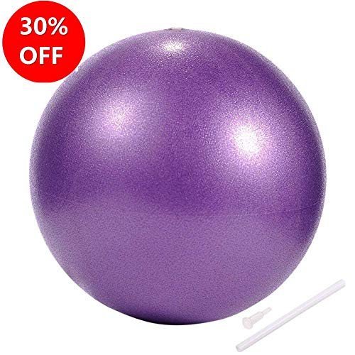 Myonly Physical Therapy Exercise Balls 10in/25CM, Mini Exercise Ball with Pump, Small Bender Ball for Stability, Barre, Pilates, Yoga, Deep Tissue Massage, Core Training and Physical Therapy (Purple)
