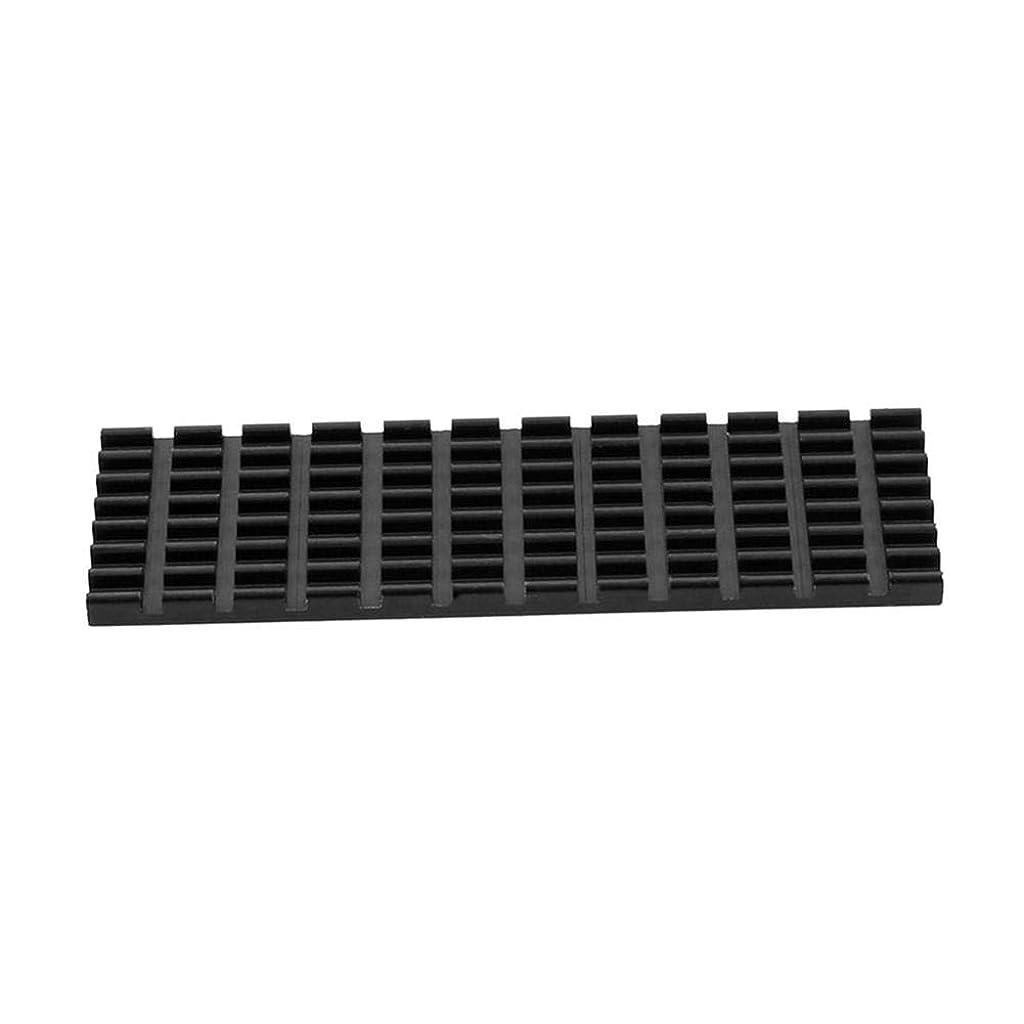 急襲トリクルマークPurelemon SSD 高速ヒートシンク ソリッドステートドライブ M.2NGFF 2280PCIE NVME 冷却ベスト 1 ブラック CH0036001XyYG