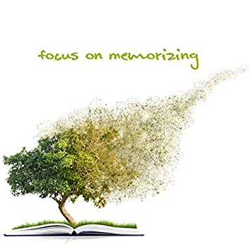 Focus on Memorizing - Collection of Natural New Age Music That Supports Concentration and Improves the Ability to Remember, Super Learning, Key to Success