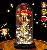 Rose Eternelle sous Cloche, Rose Galaxy avec Lumière LED Dôme en Verre Feuille Tombée Coffret Cadeau Carte de Voeux, Rose Belle et La Bête Cadeau Femme pour Fête des Mères Saint-Valentin Noël (Rouge)
