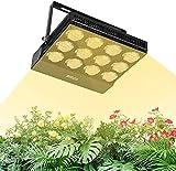 SANSI LED Pflanzenlampe Vollspektrum 70W Tageslicht, Pflanzenlicht mit Einstellbarem Hängerseil, IP66 Led Grow Lampe Wachstumslampe für Zimmerpflanzen, Gewächshaus, Hydrokultur