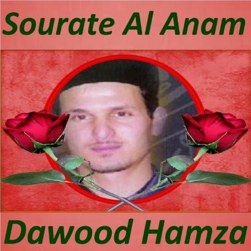 Dawood Hamza
