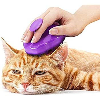 Cat Brush with Extra Soft Silicone Pins – Grooming