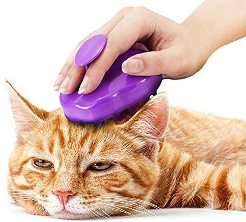 Cat Brush with Extra Soft Silico...