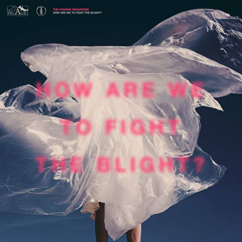 Shaking Sensations,the: How Are We to Fight the Blight (Audio CD)