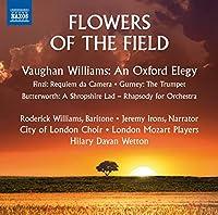 Williams: An Oxford Elegy