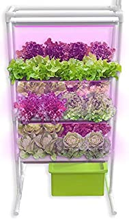 Herb Garden Starter Kit Indoor - Hydroponics Growing System with Nutrients and Herbs Seeds - Heirloom Non-GMO Cilantro, Parsley, Basil, Thyme, Mint - All in One Ready to Grow (Vertical Herb Garden)